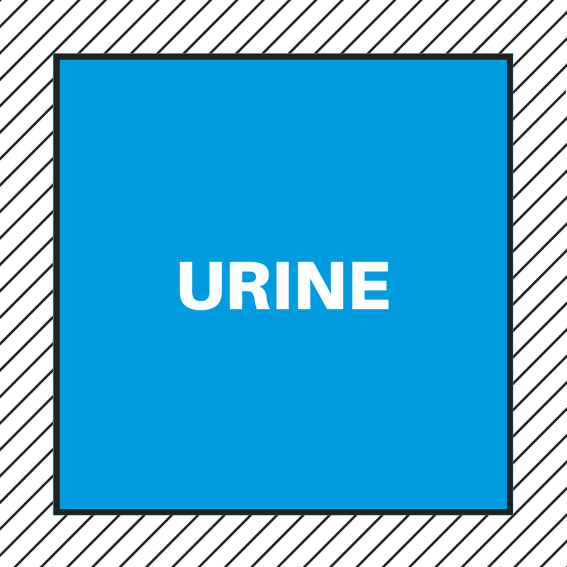 HOW TO GET RID OF THE SMELL OF URINE