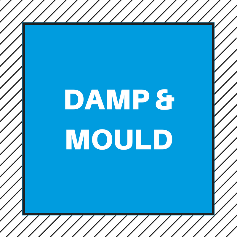 HOW TO GET RID OF THE SMELL OF DAMP AND MOULD