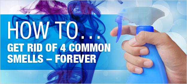 How to Get Rid of 4 Common Smells – Forever