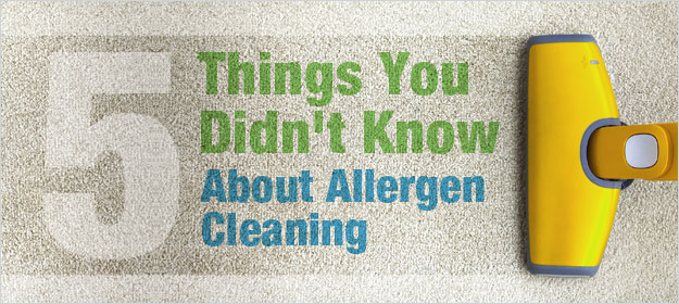 5 Things You Didn't Know About Allergen Cleaning
