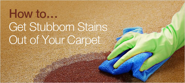 How to Get Stubborn Stains Out of Your Carpet