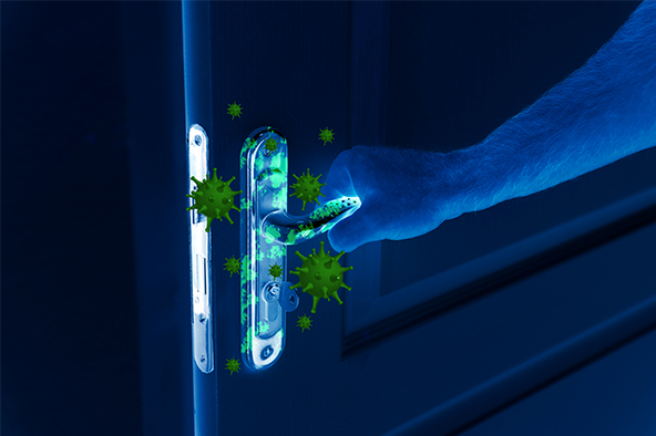 Germs Hot Spots: Are You Looking At The Right Places?