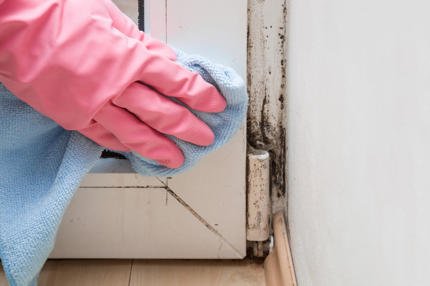 Cleaning Mould And Mildew